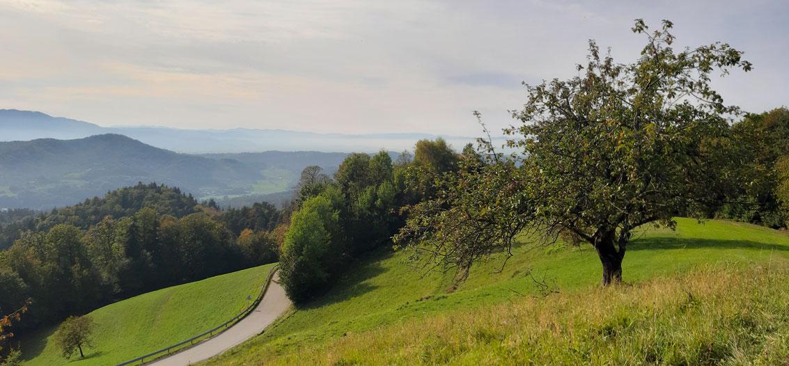 Slovenia-nature-Meadery-Jere-narava-Slovenija